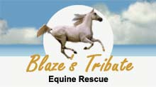 Blaze's Tribute Equine Rescue